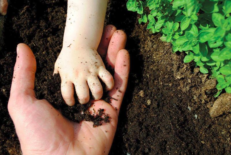 Количество живых организмов в чайной ложке почвы больше, чем всё население нашей планеты.